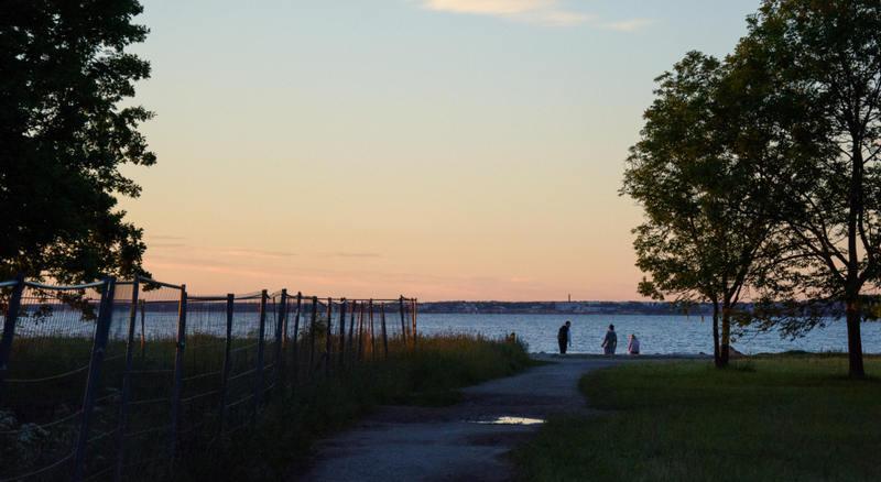 Женщины веселятся на пляже большие голые жопы