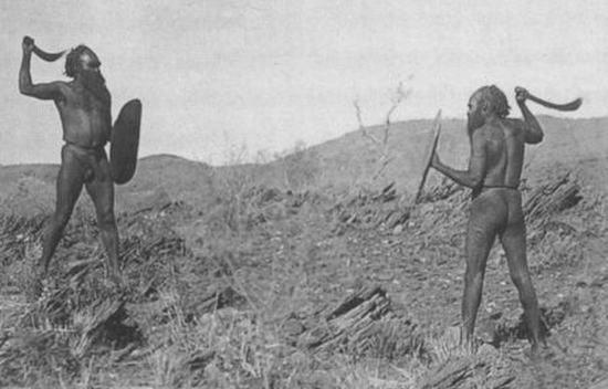 Секс аборигенов австралии ответ